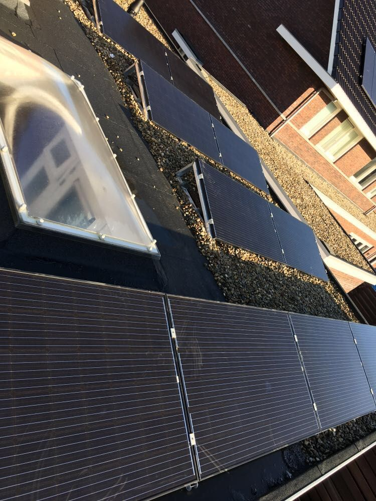 Tien Zonnepanelen Trina solar 275WP all black